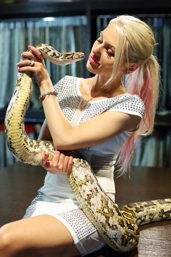 蛇 飼育 餌 ケージ 費用