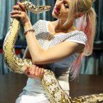 蛇を飼育したい。餌やケージの費用は?